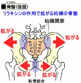 産後の生理痛は骨盤矯正で治る!?
